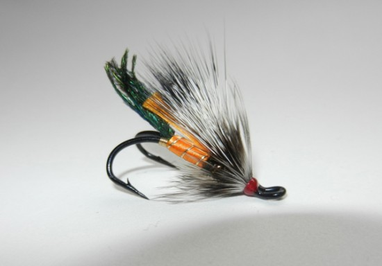 rusty rat fly