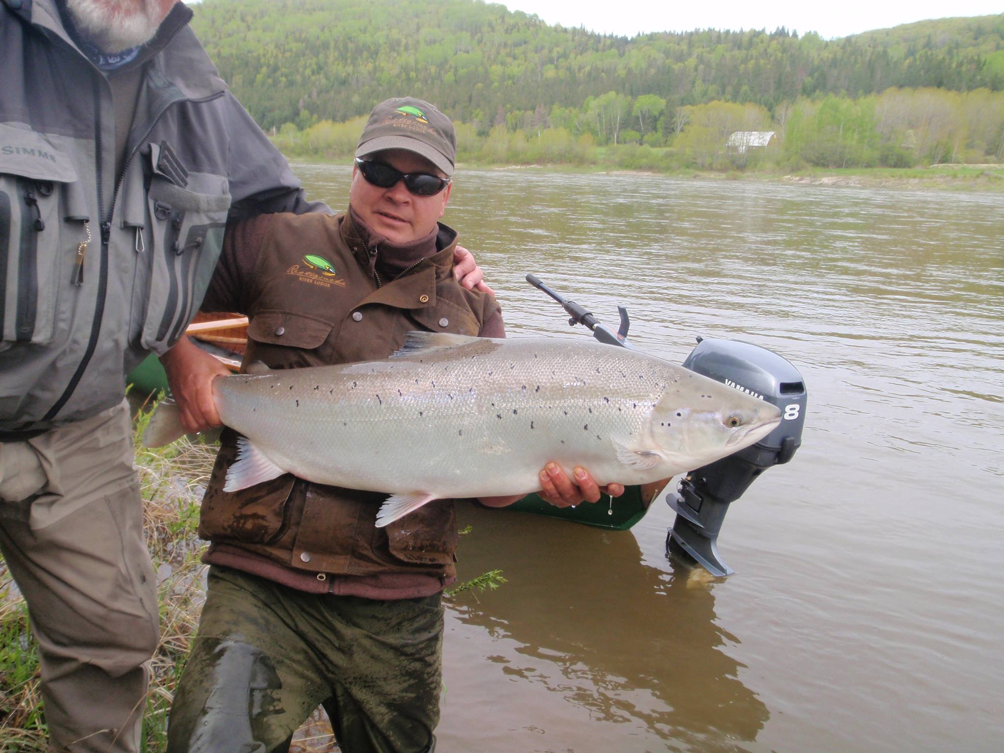 england pool serves up a 38lb beauty restigouche river
