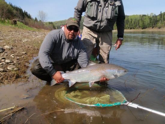 wolfgang and stephane atlantic salmon