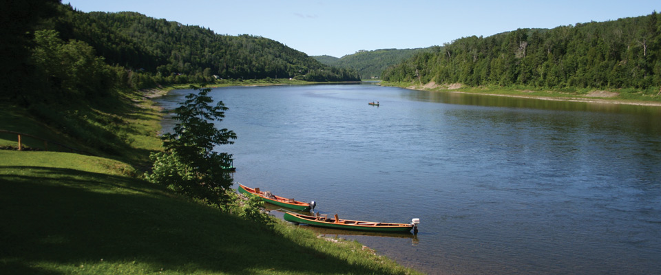 river_view_canoes_skyline.jpg