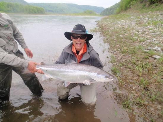 meta's salmon