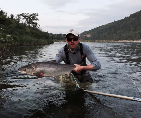 16lb Atlantic Salmon
