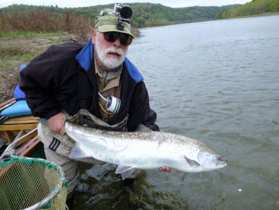 30lb Atlantic Salmon