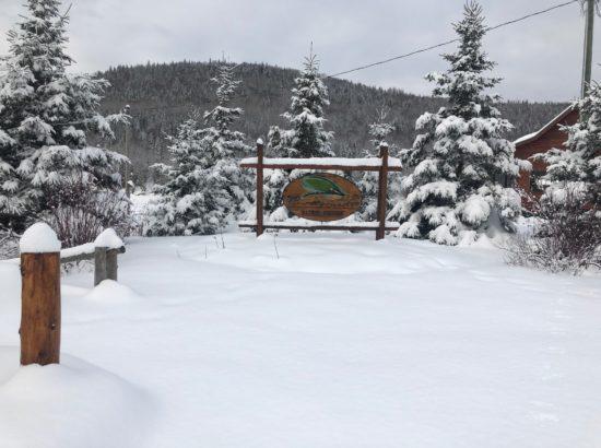 rrl snow